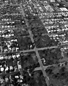 A view of part of the 105 Century Freeway corridor, rows of condemned houses and lots.