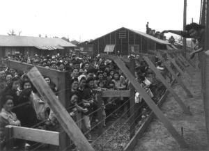 A crowd of Japanese Americans stand behind a barbed wire fence waving to departing friends on train leaving Santa Anita, California on their way to more permanent camps at Manzanar.